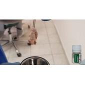 Использование Биомина с PRF создание sticky bone.
